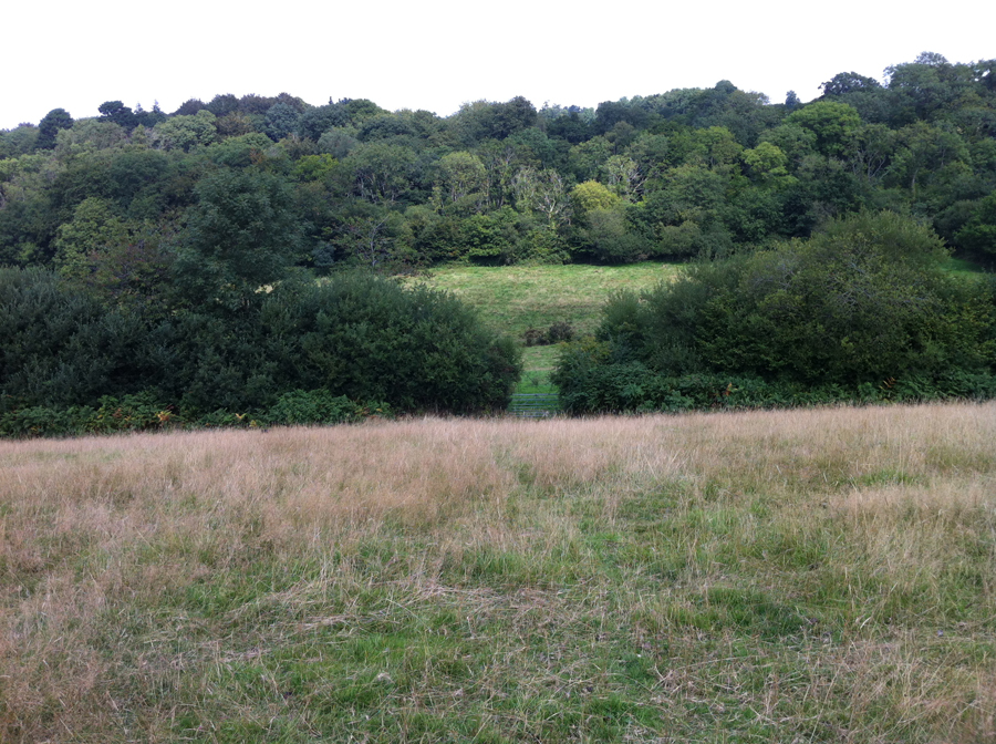 Lower Hewood Farm, Waters Hill