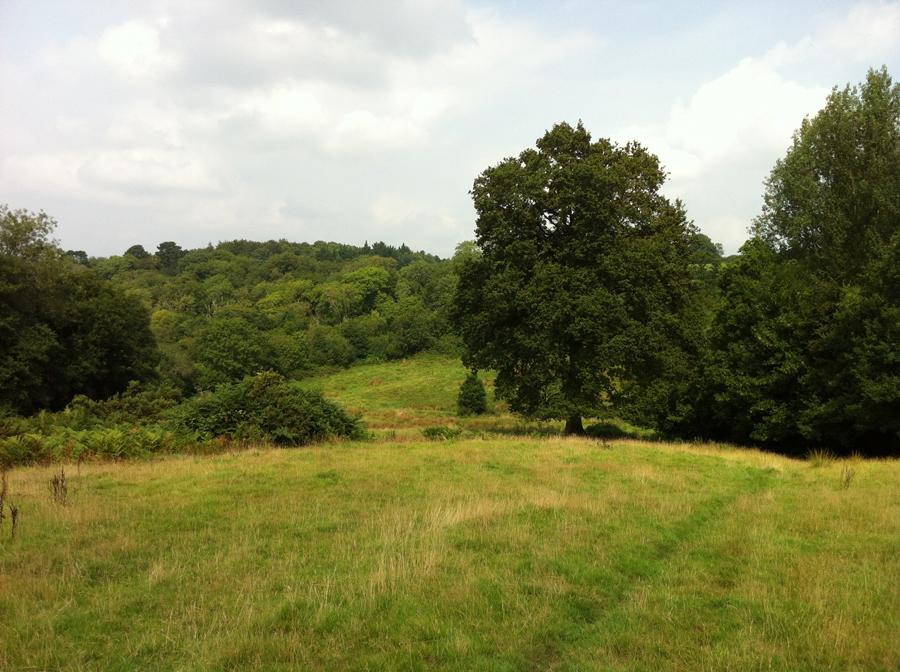 Lower Hewood Farm, Hazel Moor