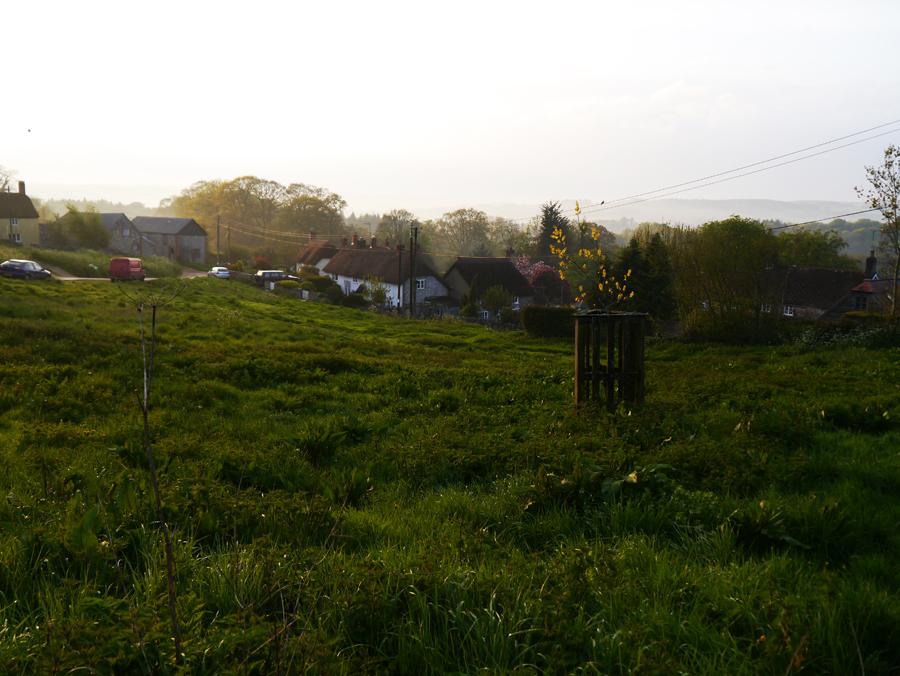 Lower Hewood Farm, Hewood
