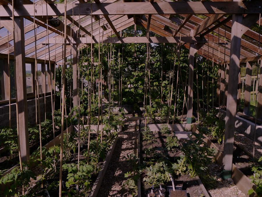 Lower Hewood Farm, Greenhouse