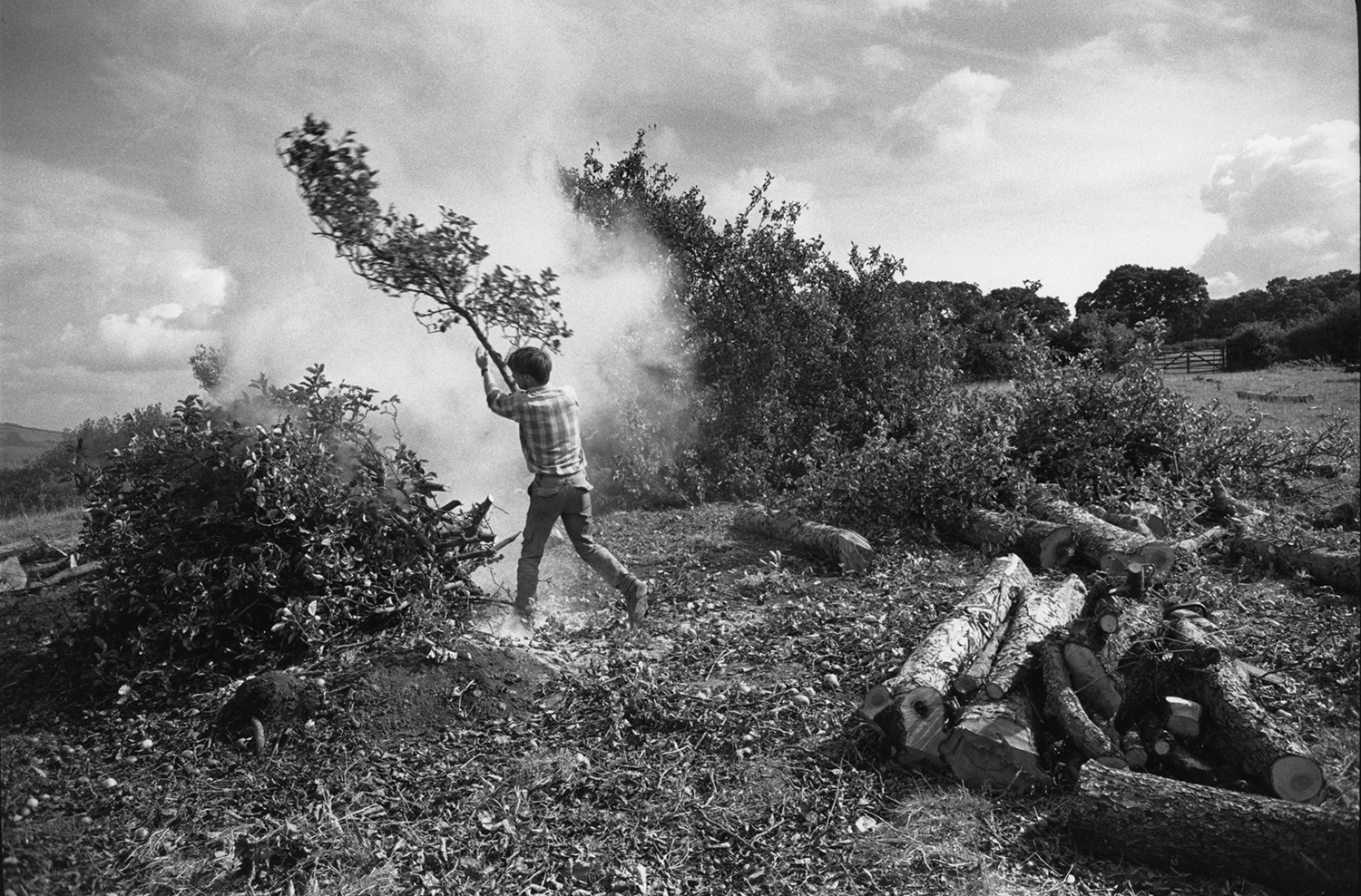 Feature image_Ravilious 38 Grubbing-out an orchard_small size