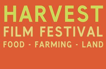 harvest-filmfest-2017